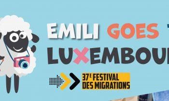 Paška ovčica Emili stiže u Luksemburg
